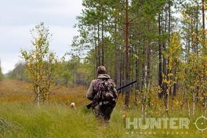 Нормы отстрела животных доступны на новом сайте Минэкологии Украины