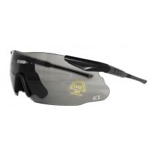 Очки защитные тактические ESS ICE (чехол)